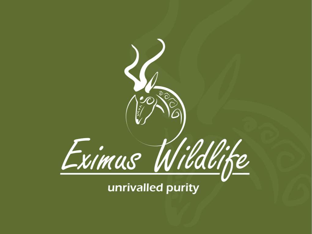 Peri Peri creative - Eximus wildlife Powerpoint template1