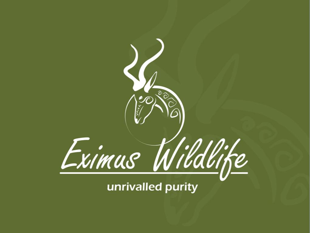 Peri Peri creative - Eximus wildlife Powerpoint template1