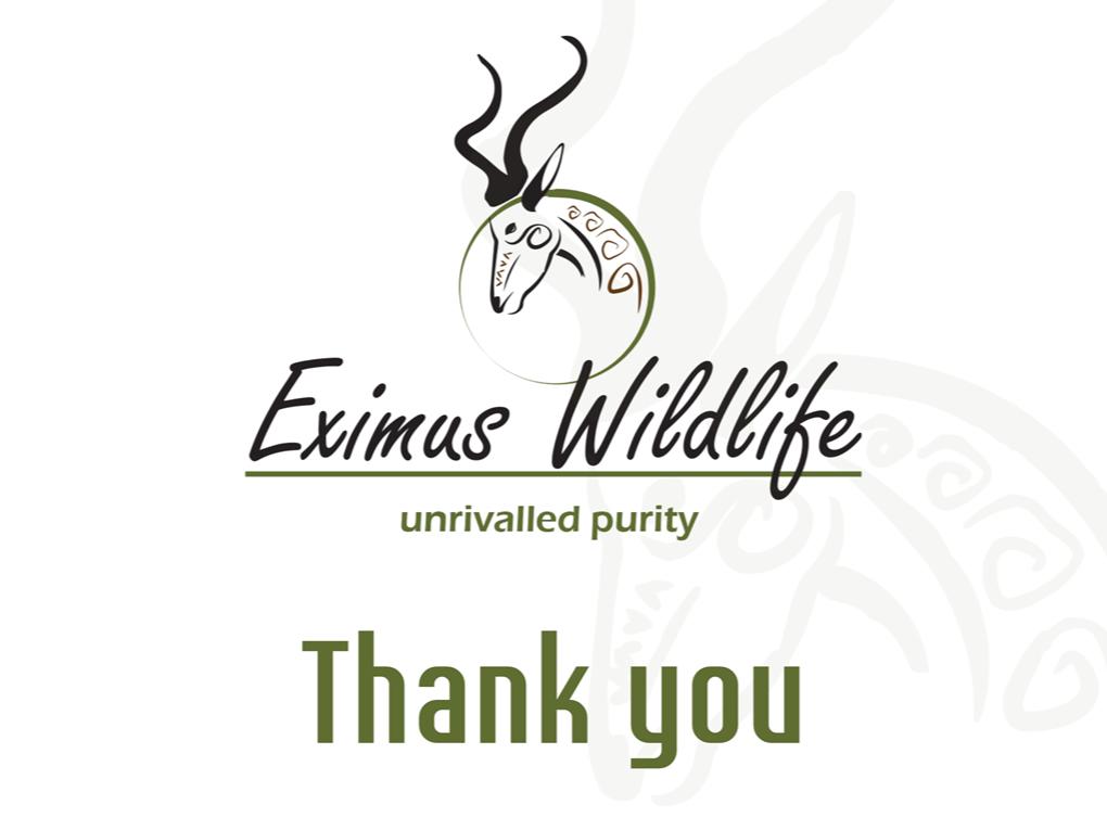 Peri Peri creative - Eximus wildlife Powerpoint template3