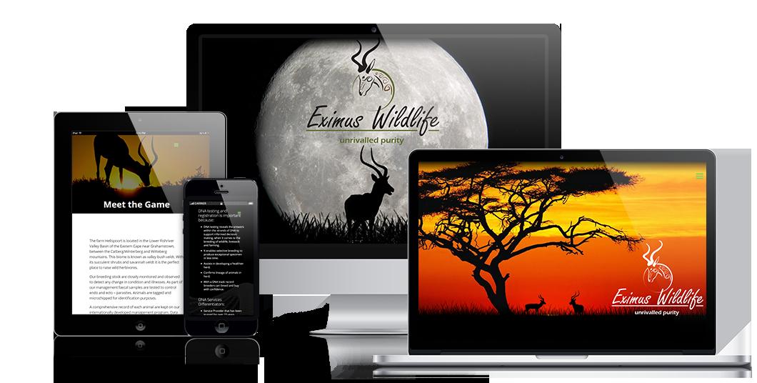 Peri Peri creative - Eximus wildlife